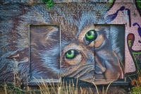 Grafitty-in-Doel